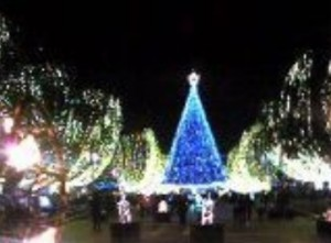 Christmas lights at Tama Center